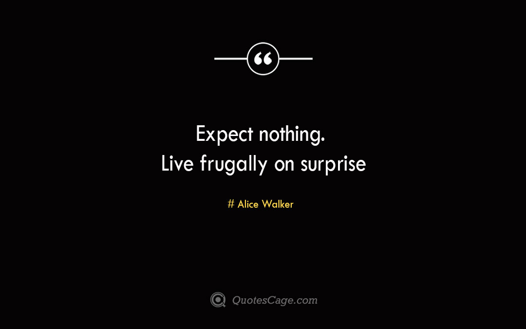 Expect nothing. Live frugally on surprise Alice Walker