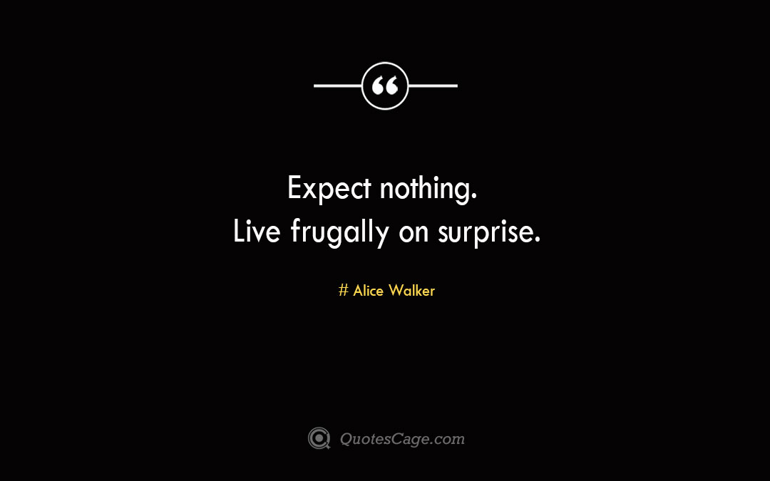 Expect nothing. Live frugally on surprise. Alice Walker