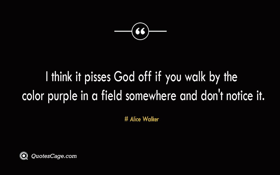 I think it pisses God off if you walk by the color purple in a field somewhere and dont notice it. Alice Walker 1