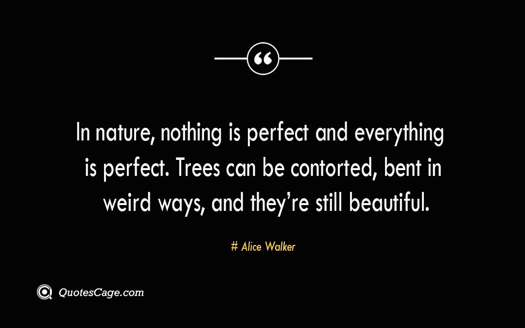 In nature nothing is perfect and everything is perfect. Trees can be contorted bent in weird ways and theyre still beautiful. Alice Walker