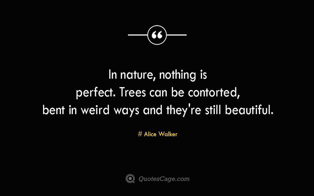 In nature nothing is perfect. Trees can be contorted bent in weird ways and they re still beautiful. Alice Walker