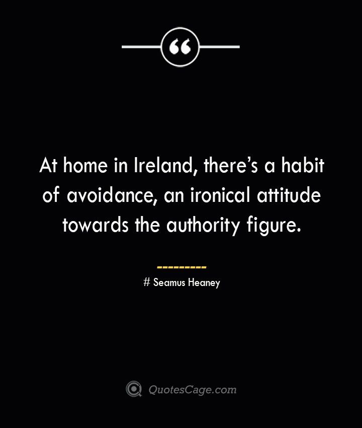 At home in Ireland theres a habit of avoidance an ironical attitude towards the authority figure. Seamus Heaney