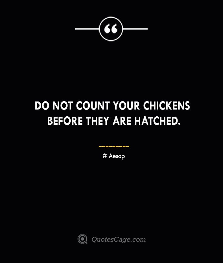 Do not count your chickens before they are hatched. –Aesop