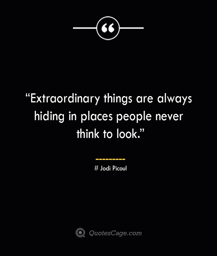 Extraordinary things are always hiding in places people never think to look. —Jodi Picoul