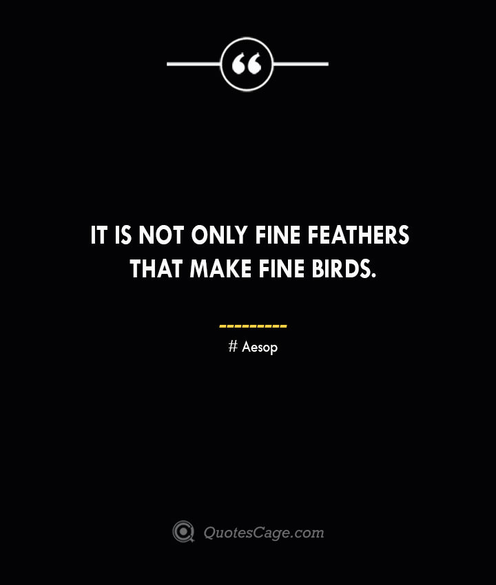 It is not only fine feathers that make fine birds. –Aesop