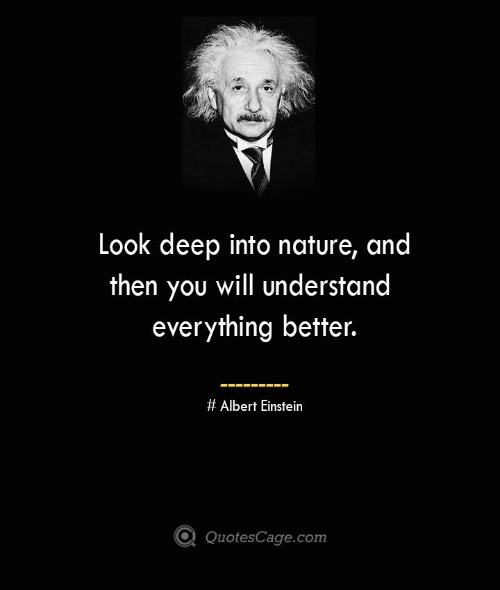 Look deep into nature and then you will understand everything better. –Albert Einstein