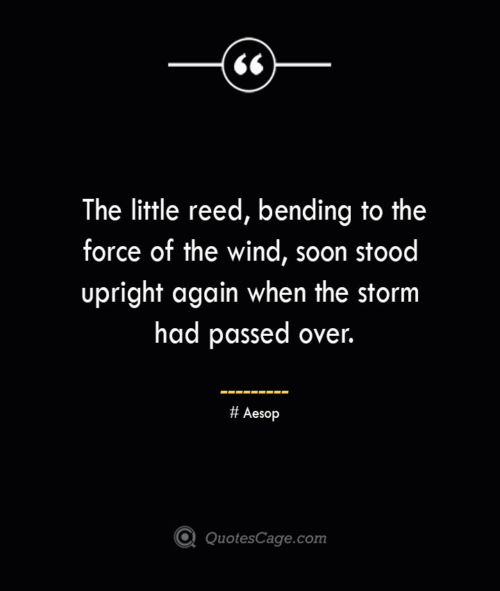The little reed bending to the force of the wind soon stood upright again when the storm had passed over. –Aesop