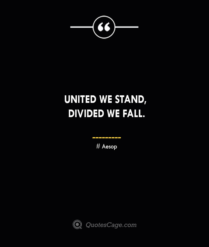 United we stand divided we fall. –Aesop