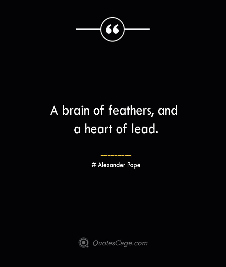 A brain of feathers and a heart of lead.— Alexander Pope
