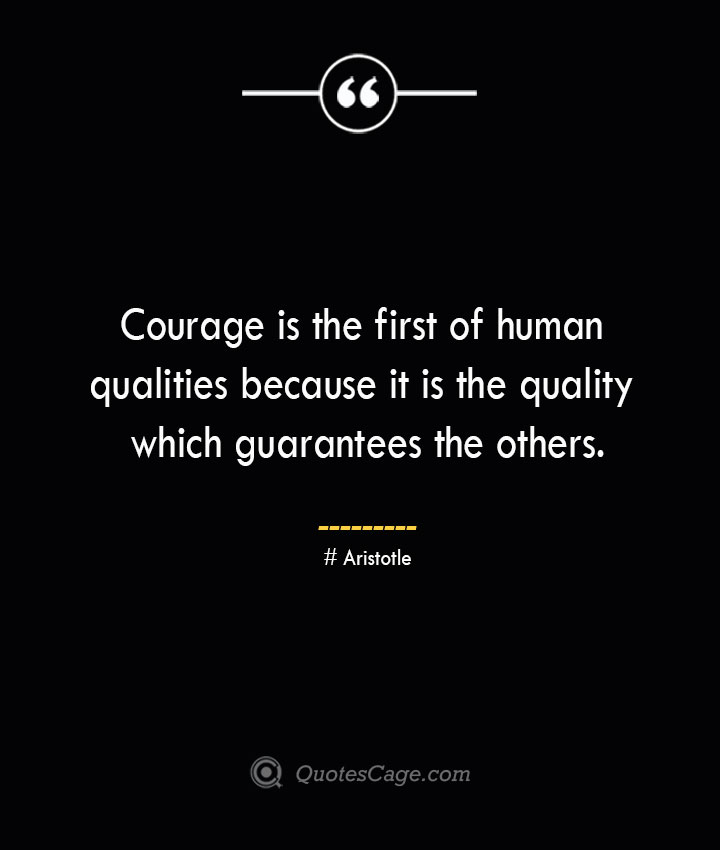 Courage is the first of human qualities because it is the quality which guarantees the others.— Aristotle
