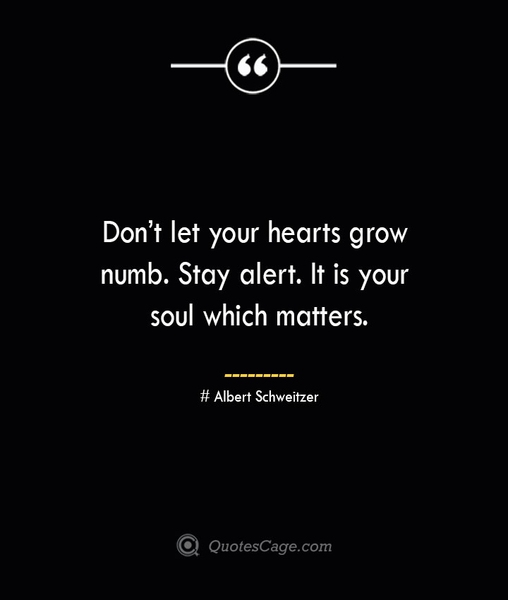 Dont let your hearts grow numb. Stay alert. It is your soul which matters.— Albert Schweitzer