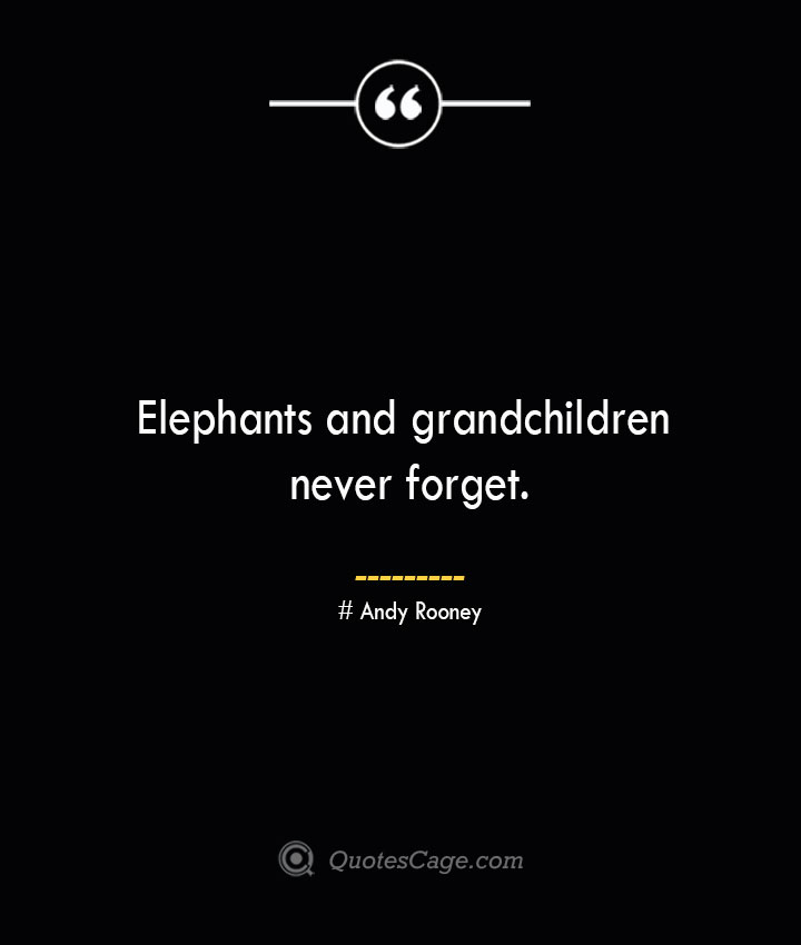 Elephants and grandchildren never forget.— Andy Rooney