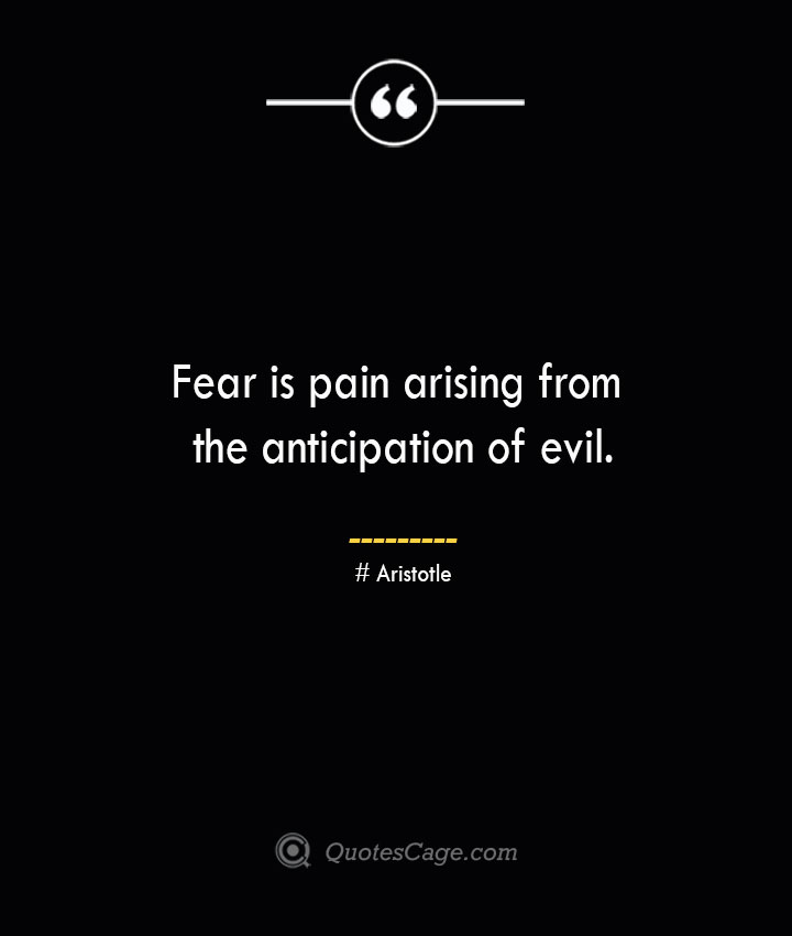 Fear is pain arising from the anticipation of evil. Aristotle