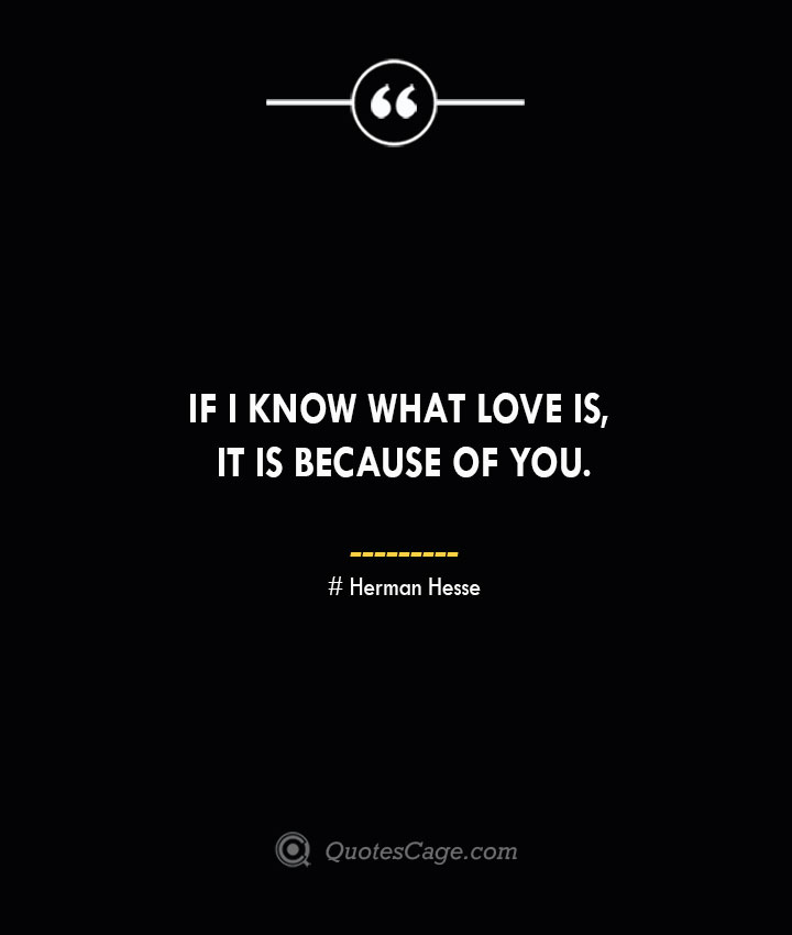 If I know what love is it is because of you.— Herman Hesse
