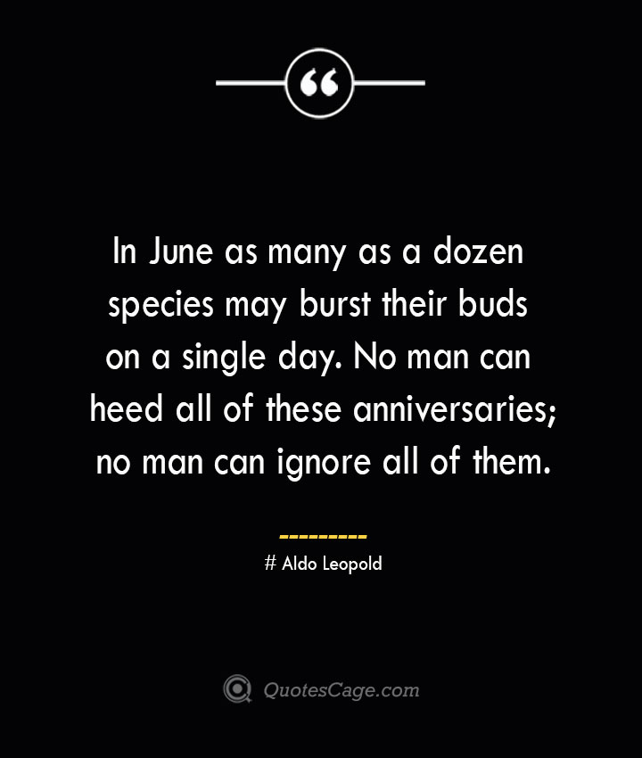 In June as many as a dozen species may burst their buds on a single day. No man can heed all of these anniversaries no man can ignore all of them.— Aldo Leopold