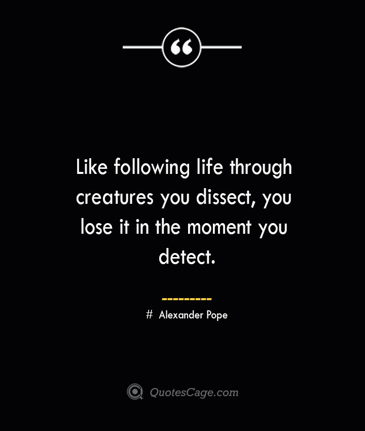 Like following life through creatures you dissect you lose it in the moment you detect.— Alexander Pope