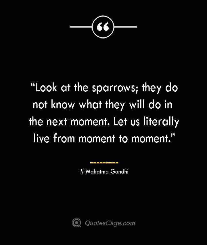 Look at the sparrows they do not know what they will do in the next moment. Let us literally live from moment to moment.—Mahatma Gandhi