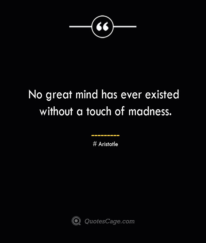 No great mind has ever existed without a touch of madness.— Aristotle