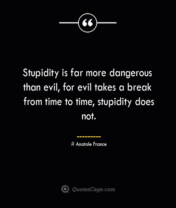 Stupidity is far more dangerous than evil for evil takes a break from time to time stupidity does not. Anatole France