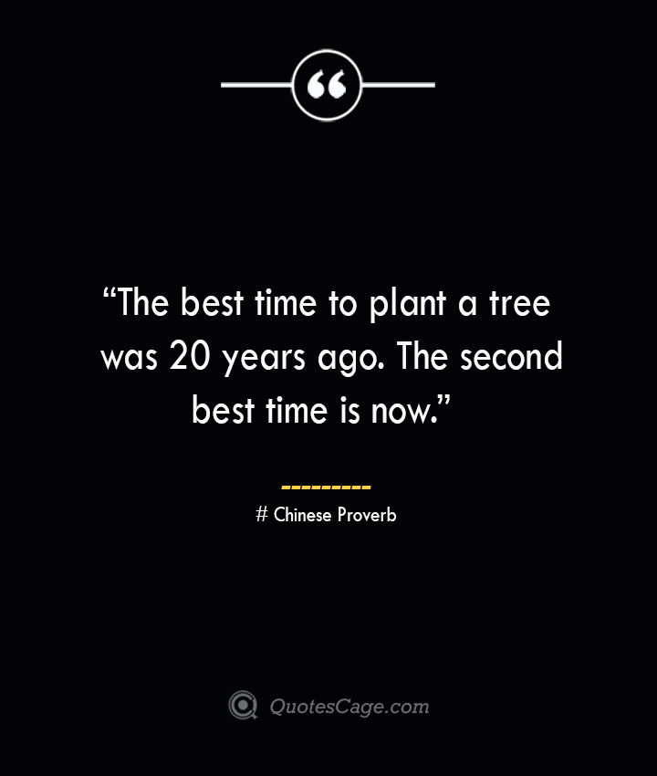 The best time to plant a tree was 20 years ago. The second best time is now. —Chinese Proverb