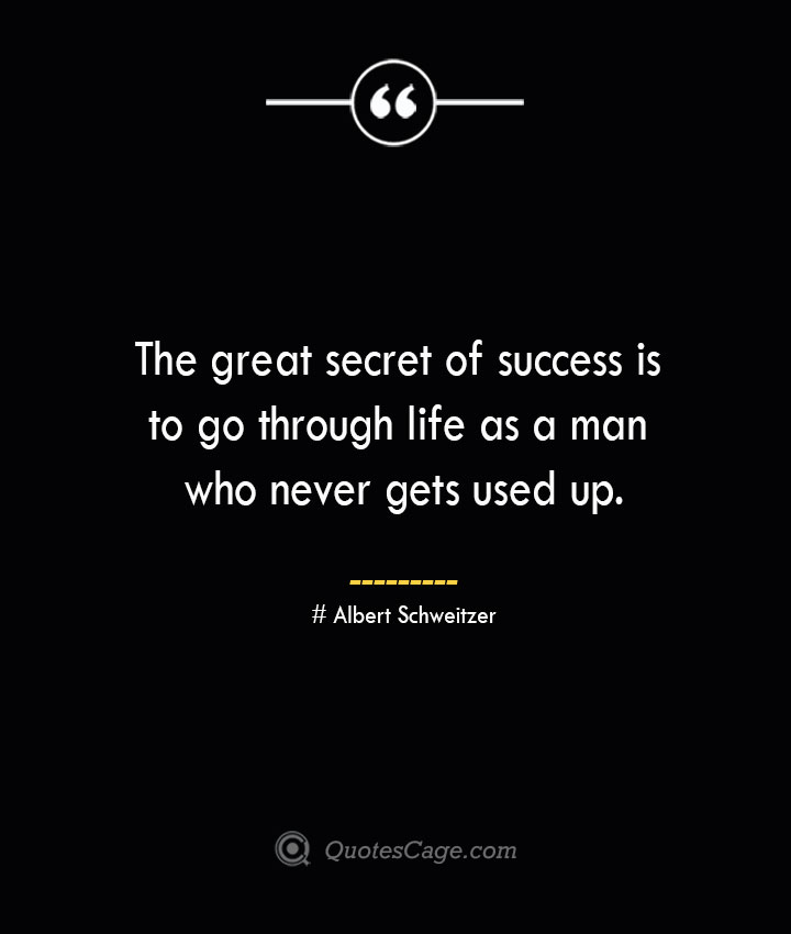 The great secret of success is to go through life as a man who never gets used up.— Albert Schweitzer