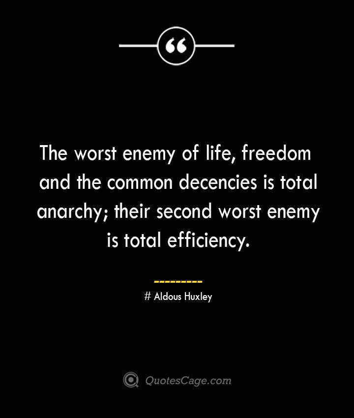 The worst enemy of life freedom and the common decencies is total anarchy their second worst enemy is total efficiency.— Aldous