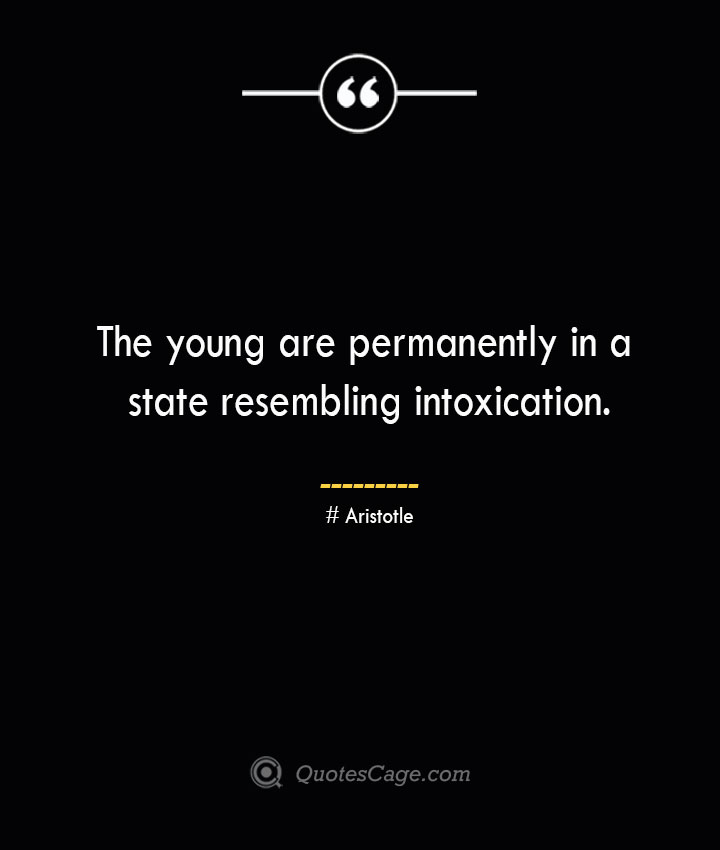 The young are permanently in a state resembling intoxication. Aristotle