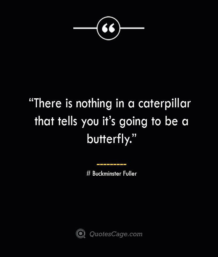 There is nothing in a caterpillar that tells you its going to be a butterfly. —Buckminster Fuller