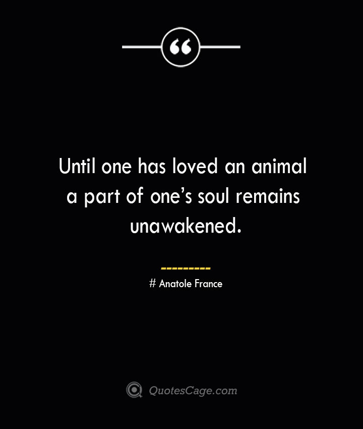 Until one has loved an animal a part of ones soul remains unawakened.— Anatole France