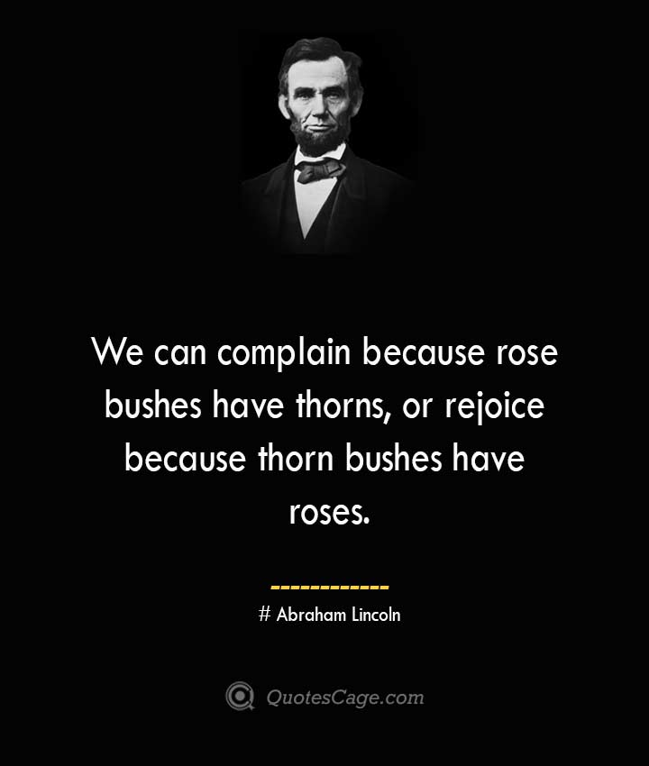 We can complain because rose bushes have thorns or rejoice because thorn bushes have roses.— Abraham Lincoln