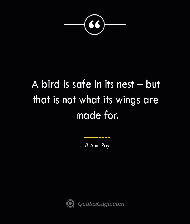 A bird is safe in its nest – but that is not what its wings are made for.— Amit Ray