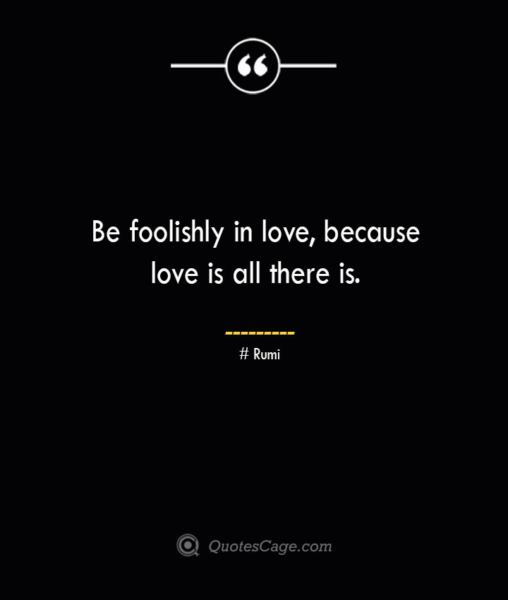 Be foolishly in love because love is all there is. — Rumi