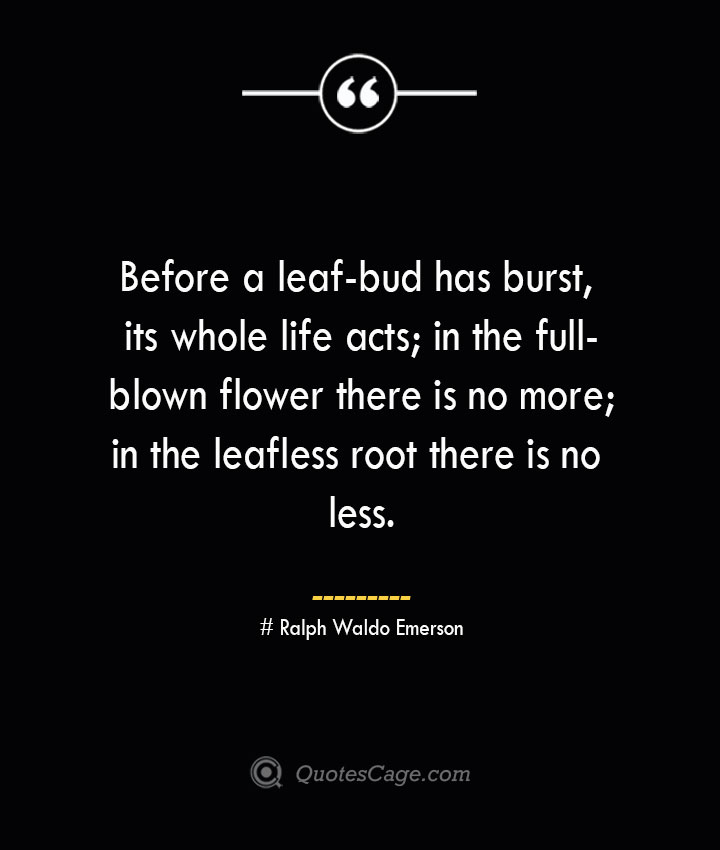 Before a leaf bud has burst its whole life acts in the full blown flower there is no more in the leafless root there is no less.— Ralph Waldo Emerson