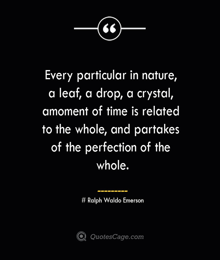 Every particular in nature a leaf a drop a crystal a moment of time is related to the whole and partakes of the perfection of the whole.— Ralph Waldo Emerson