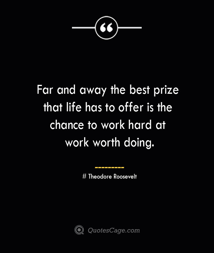 Far and away the best prize that life has to offer is the chance to work hard at work worth doing.— Theodore Roosevelt