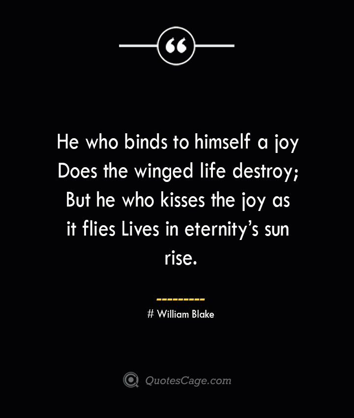 He who binds to himself a joy Does the winged life destroy But he who kisses the joy as it flies Lives in eternitys sun rise.— William Blake