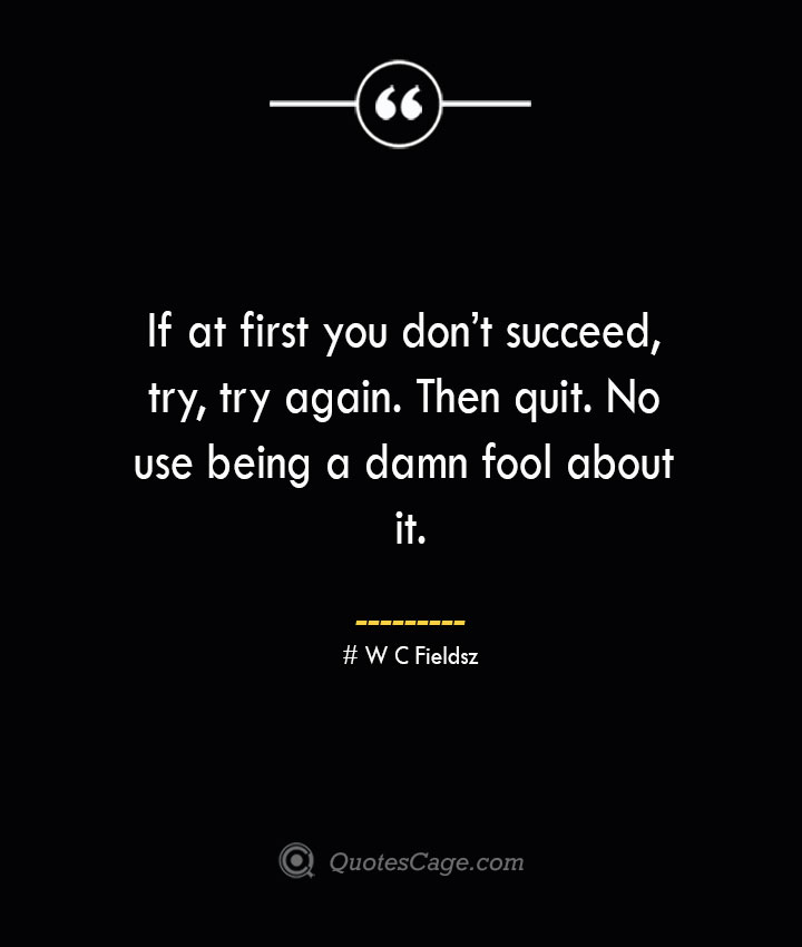 If at first you dont succeed try try again. Then quit. No use being a damn fool about it.— W C Fields
