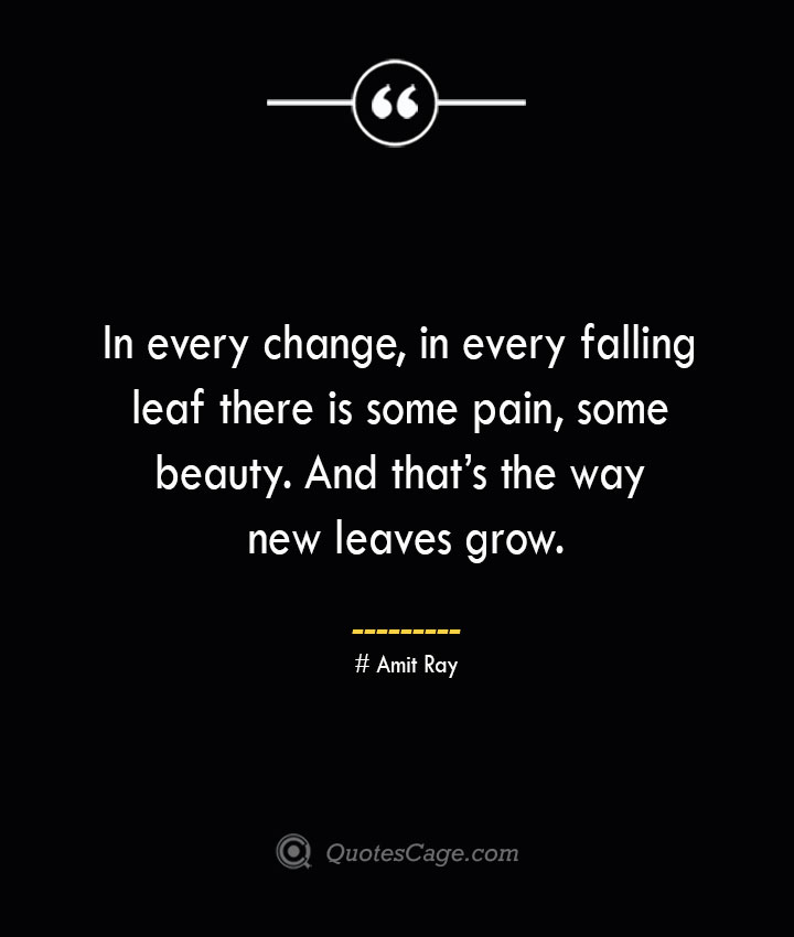 In every change in every falling leaf there is some pain some beauty. And thats the way new leaves grow.— Amit Ray