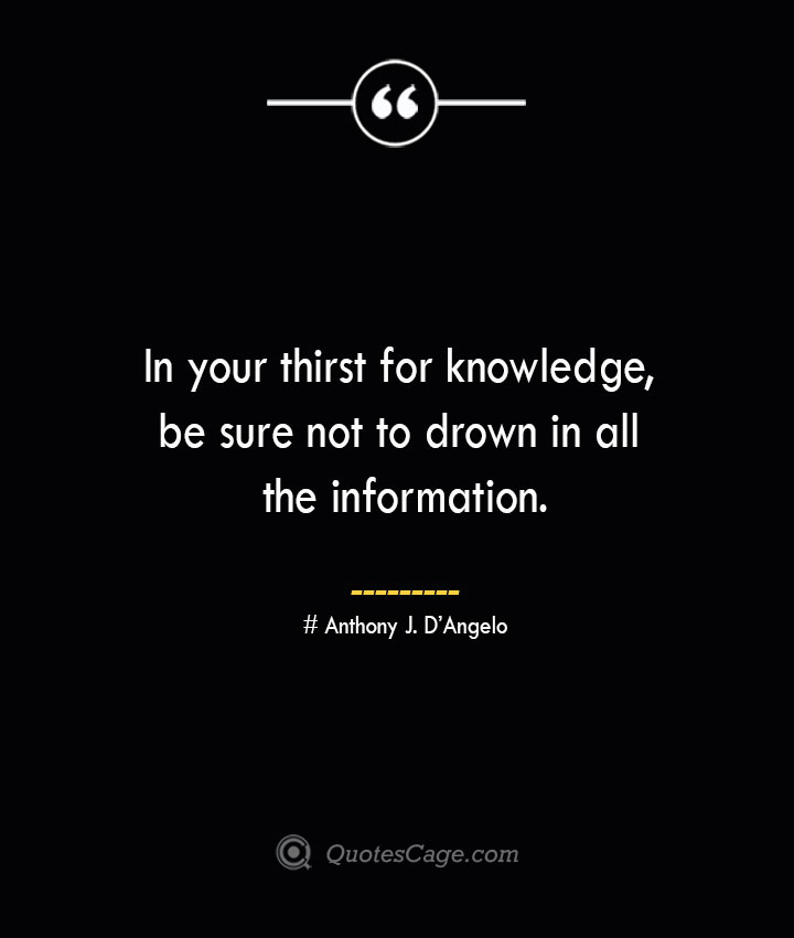 In your thirst for knowledge be sure not to drown in all the information.— Anthony J. DAngelo