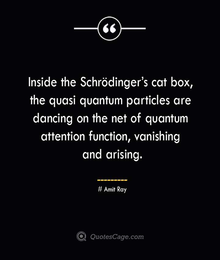 Inside the Schrodingers cat box the quasi quantum particles are dancing on the net of quantum attention function vanishing and arising.— Amit Ray