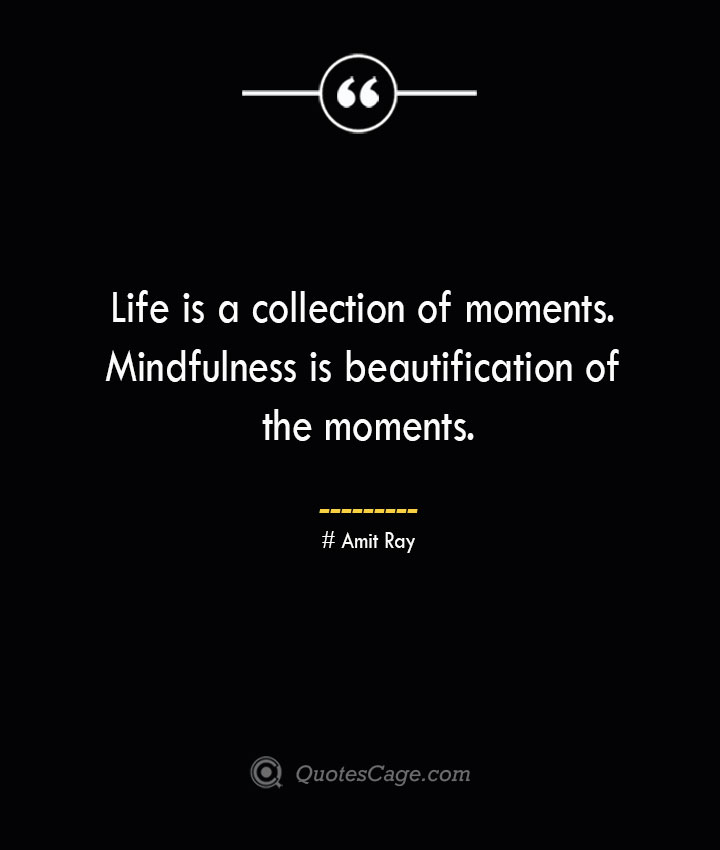 Life is a collection of moments. Mindfulness is beautification of the moments.— Amit Ray