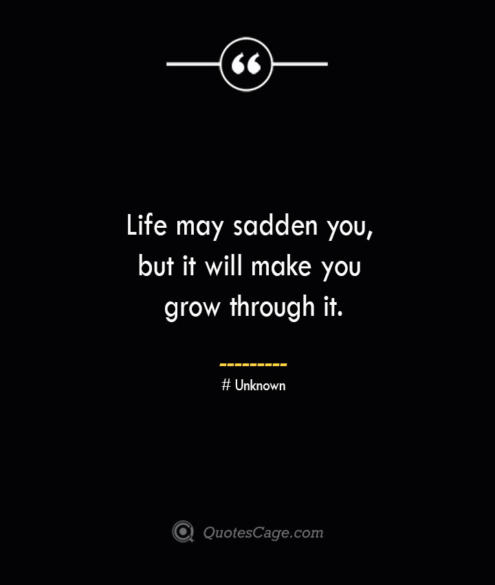 Life may sadden you but it will make you grow through it.— Unknown