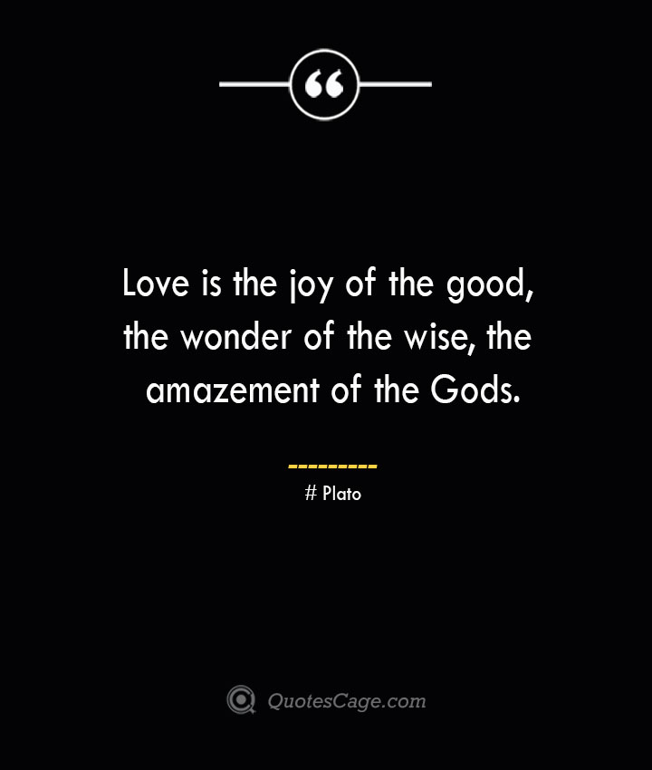 Love is the joy of the good the wonder of the wise the amazement of the Gods.— Plato