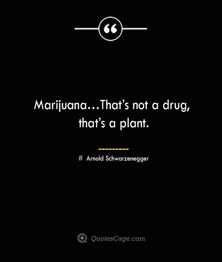 Marijuana… Thats not a drug thats a plant. — Arnold Schwarzenegger