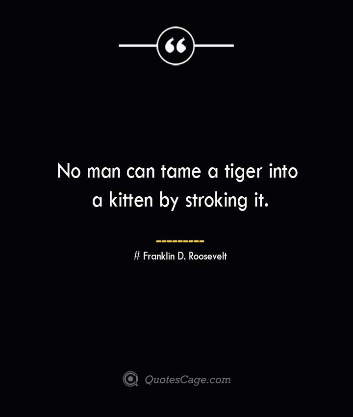 No man can tame a tiger into a kitten by stroking it.— Franklin D. Roosevelt