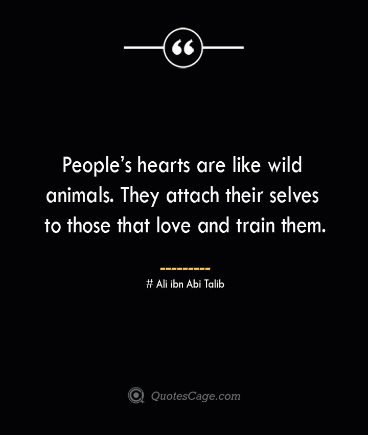 Peoples hearts are like wild animals. They attach their selves to those that love and train them.— Ali ibn Abi Talib