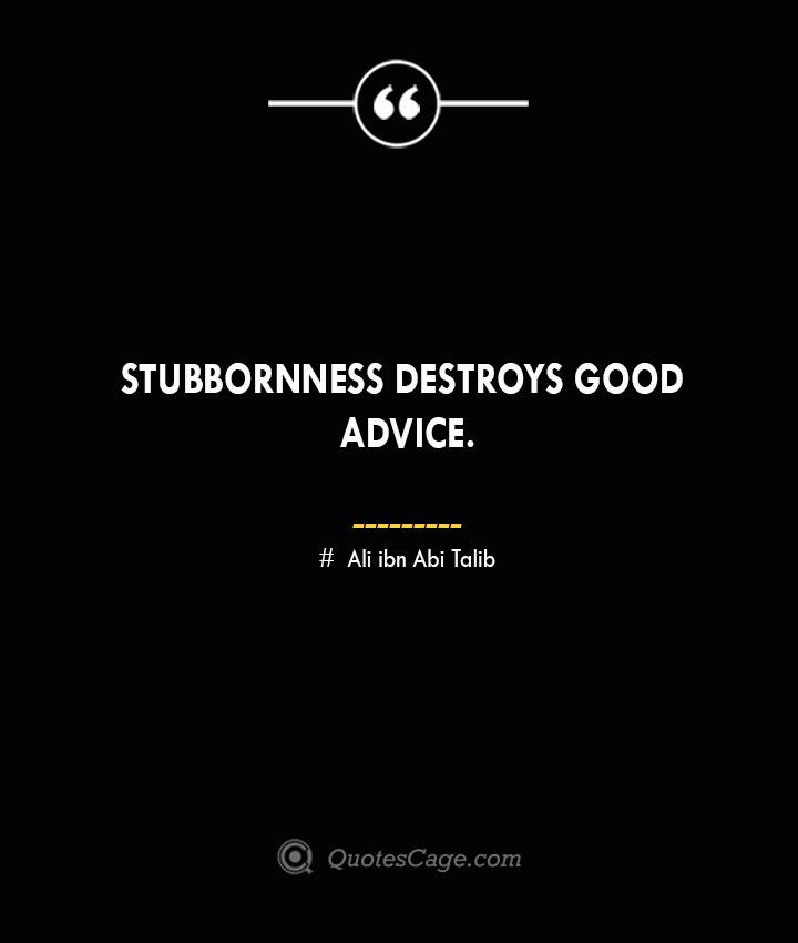 Stubbornness destroys good advice.— Ali ibn Abi Talib