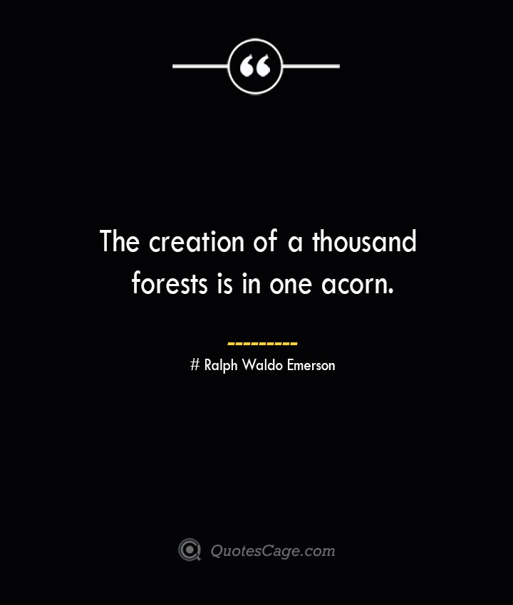 The creation of a thousand forests is in one acorn.— Ralph Waldo Emerson