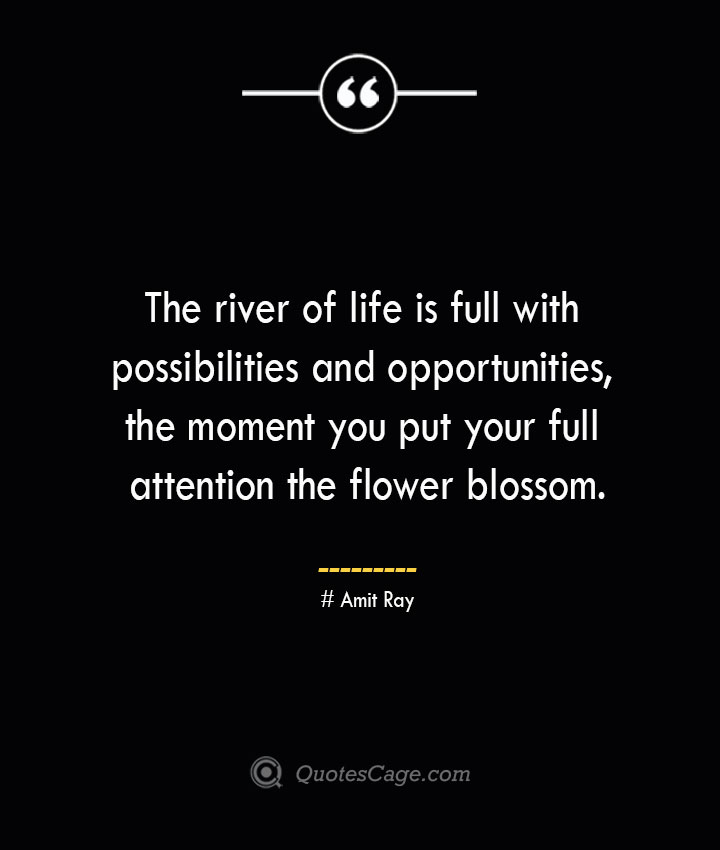 The river of life is full with possibilities and opportunities the moment you put your full attention the flower blossom.— Amit Ray
