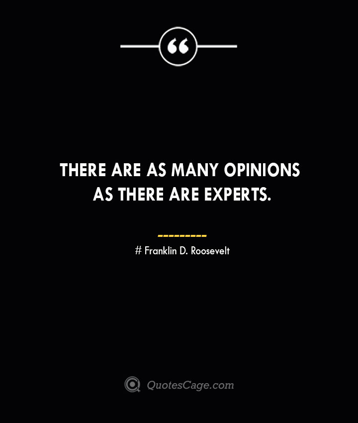 There are as many opinions as there are experts.— Franklin D. Roosevelt